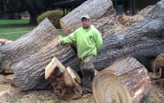 man standing next to cut up tree